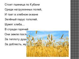 Стоит пшеница по Кубани Среди натруженных полей, И тает в хлебном океане Зел