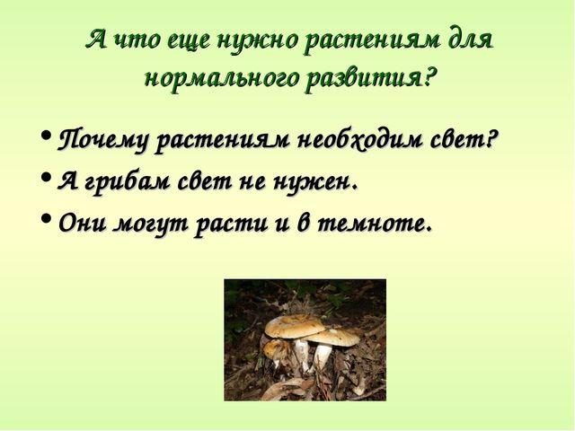 А что еще нужно растениям для нормального развития? Почему растениям необходи...