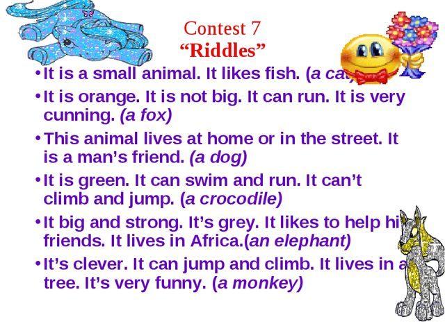"""Contest 7 """"Riddles"""" It is a small animal. It likes fish. (a cat) It is orange..."""