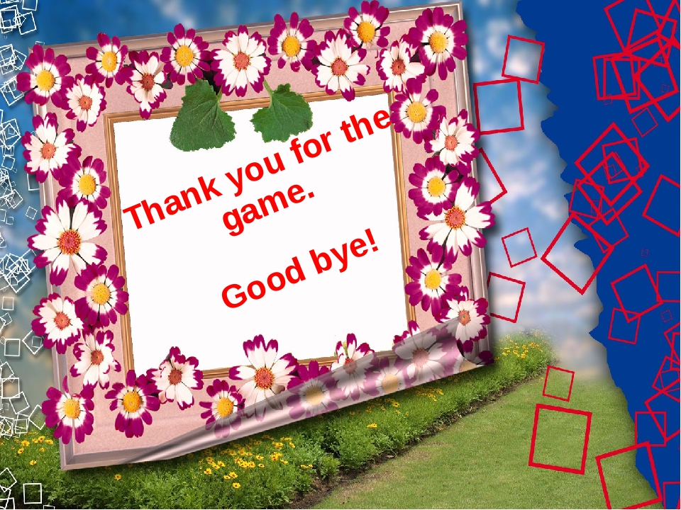 Thank you for the game. Good bye!
