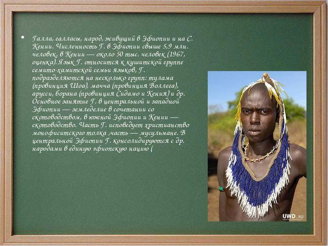 Галла, галласы, народ, живущий в Эфиопии и на С. Кении. Численность Г. в Эфио...