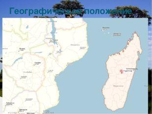 Мадагаскар— остров у юго-восточного побережья Африки. Всю его территорию, 58