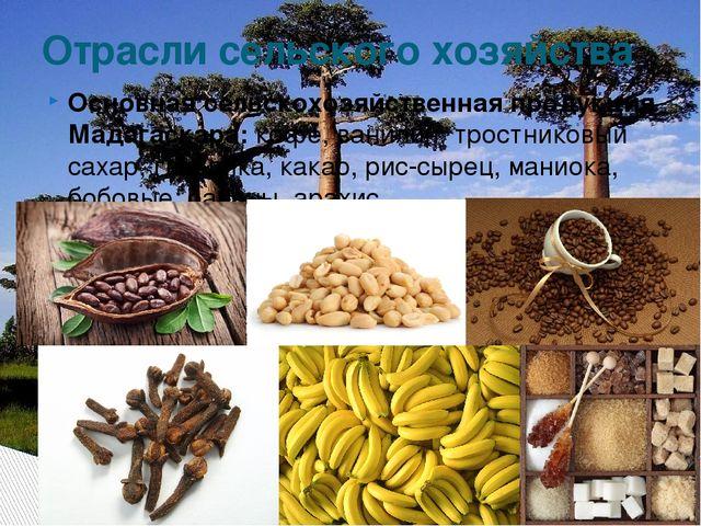 Основная сельскохозяйственная продукция Мадагаскара:кофе, ванилин, тростнико...
