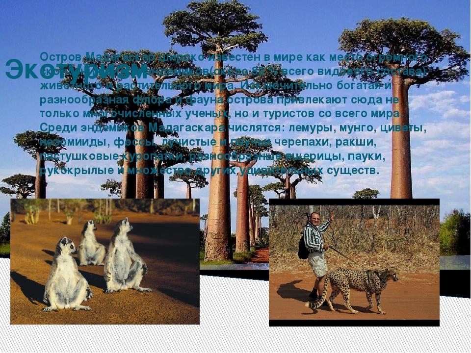 Экотуризм Остров Мадагаскар широко известен в мире как место огромного скопл...