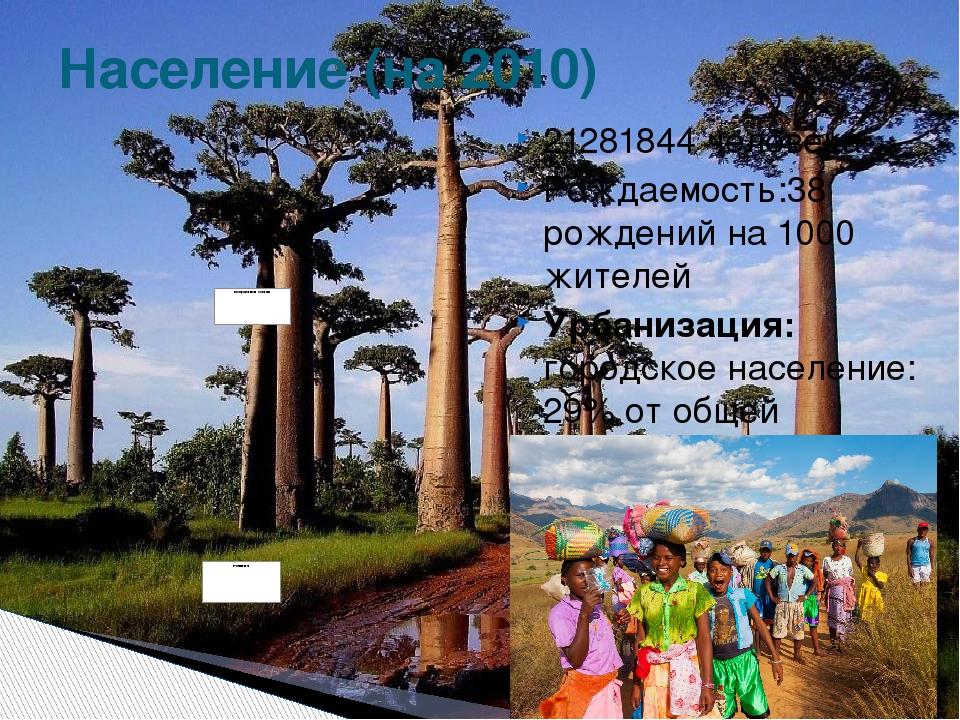 21281844 человека Рождаемость:38 рождений на 1000 жителей Урбанизация: городс...