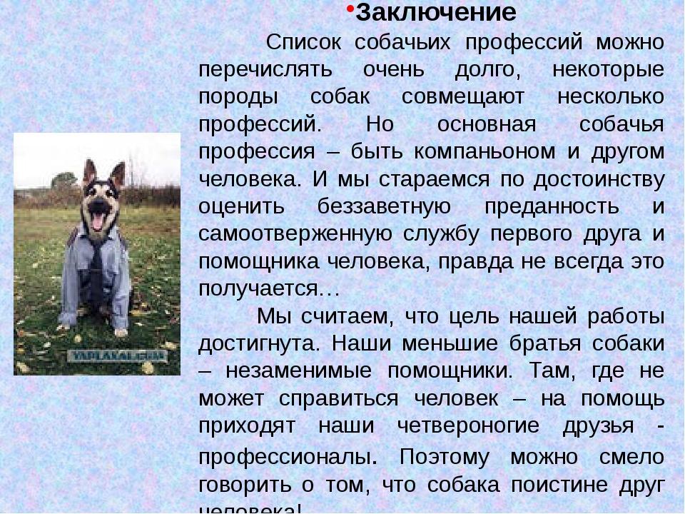 Заключение Список собачьих профессий можно перечислять очень долго, некоторые...