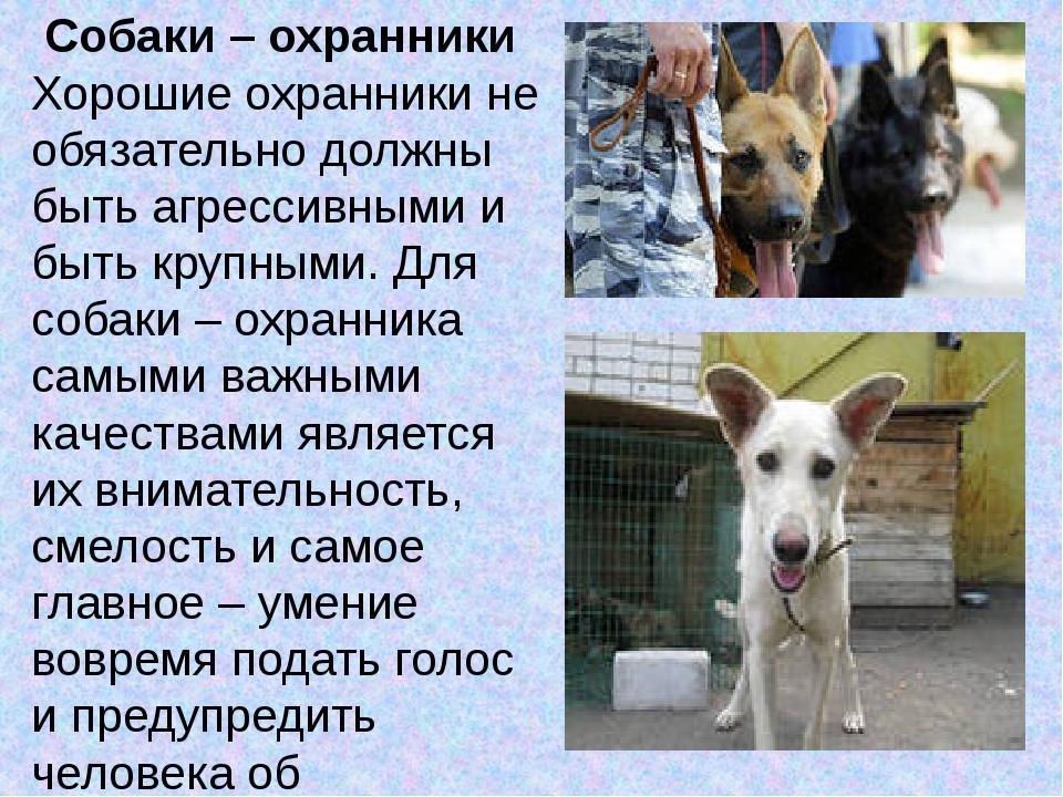 Собаки – охранники Хорошие охранники не обязательно должны быть агрессивными...