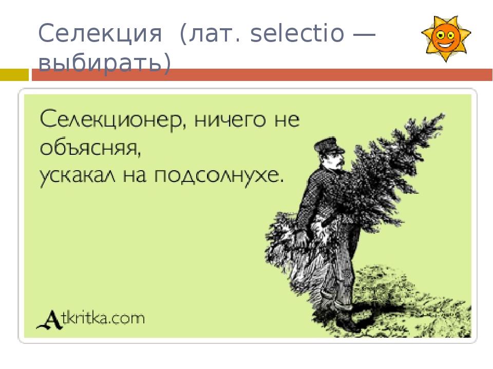 Селекция (лат. selectio — выбирать) Селекционер