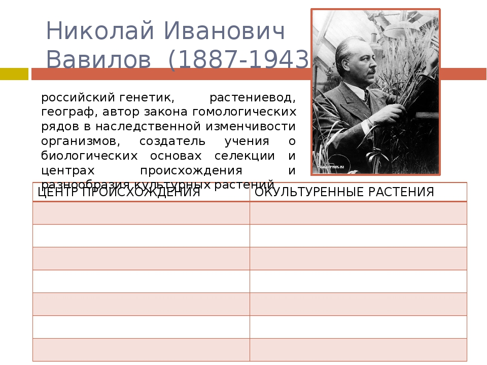 Николай Иванович Вавилов (1887-1943) российскийгенетик, растениевод, геогра...