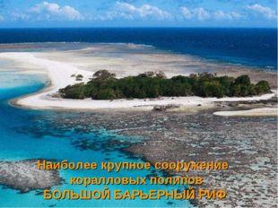 Наиболее крупное сооружение коралловых полипов БОЛЬШОЙ БАРЬЕРНЫЙ РИФ