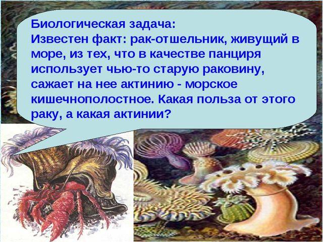 Биологическая задача: Известен факт: рак-отшельник, живущий в море, из тех, ч...