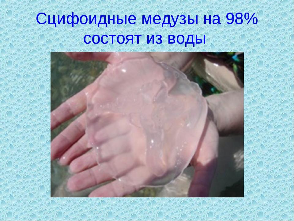 Сцифоидные медузы на 98% состоят из воды