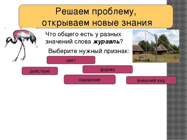 Решаем проблему, открываем новые знания Что общего есть у разных значений сло...