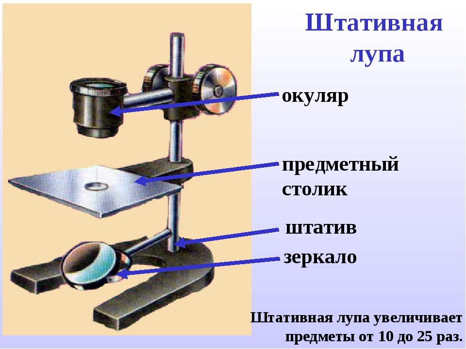 Штативная лупа штатив зеркало предметный столик окуляр Штативная лупа увеличи...