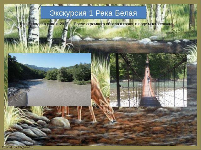 Экскурсия 1 Река Белая Так выглядела река в 2012 г.. После огромного обвала в...