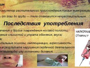 5.Кокаин Психостимулятор растительного происхождения.Кокаин вымораживает обла