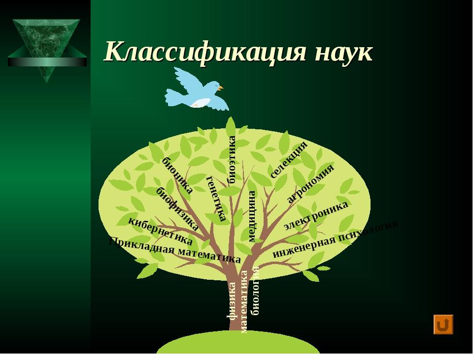 Классификация наук математика медицина Прикладная математика биология генетик...