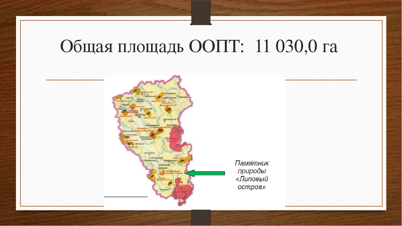 Общая площадь ООПТ: 11 030,0 га