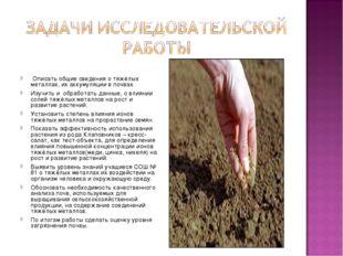 Описать общие сведения о тяжёлых металлах, их аккумуляции в почвах. Изучить