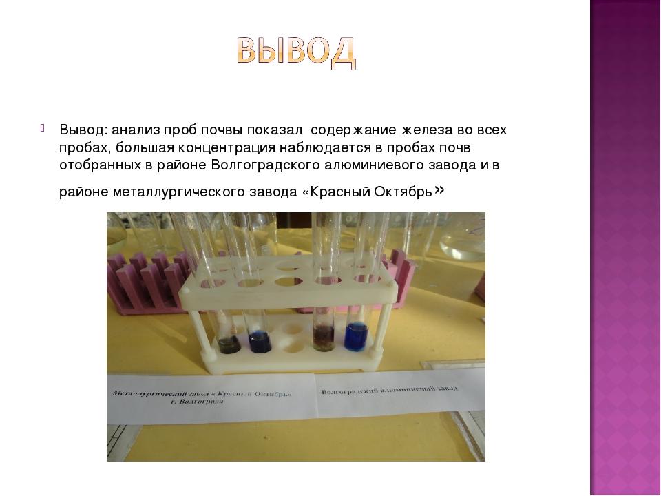 Вывод: анализ проб почвы показал содержание железа во всех пробах, большая ко...
