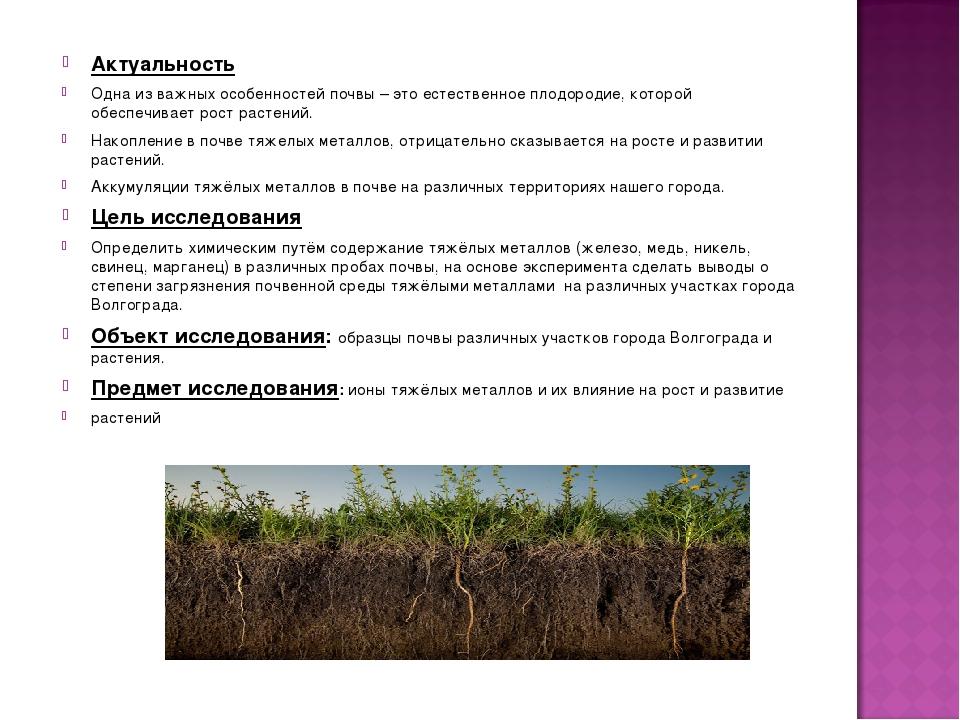 Актуальность Одна из важных особенностей почвы – это естественное плодородие,...