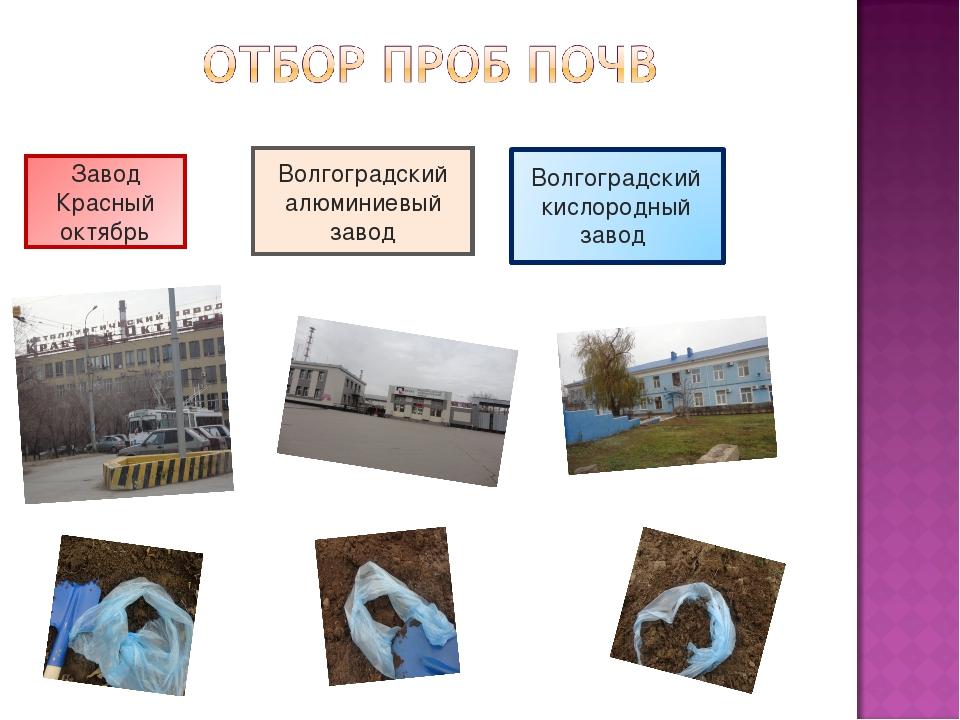 Завод Красный октябрь Волгоградский алюминиевый завод