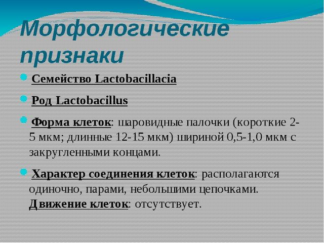 Морфологические признаки Семейство Lactobacillacia Род Lactobacillus Форма кл...