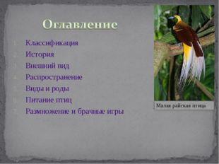 Классификация История Внешний вид Распространение Виды и роды Питание птиц Ра