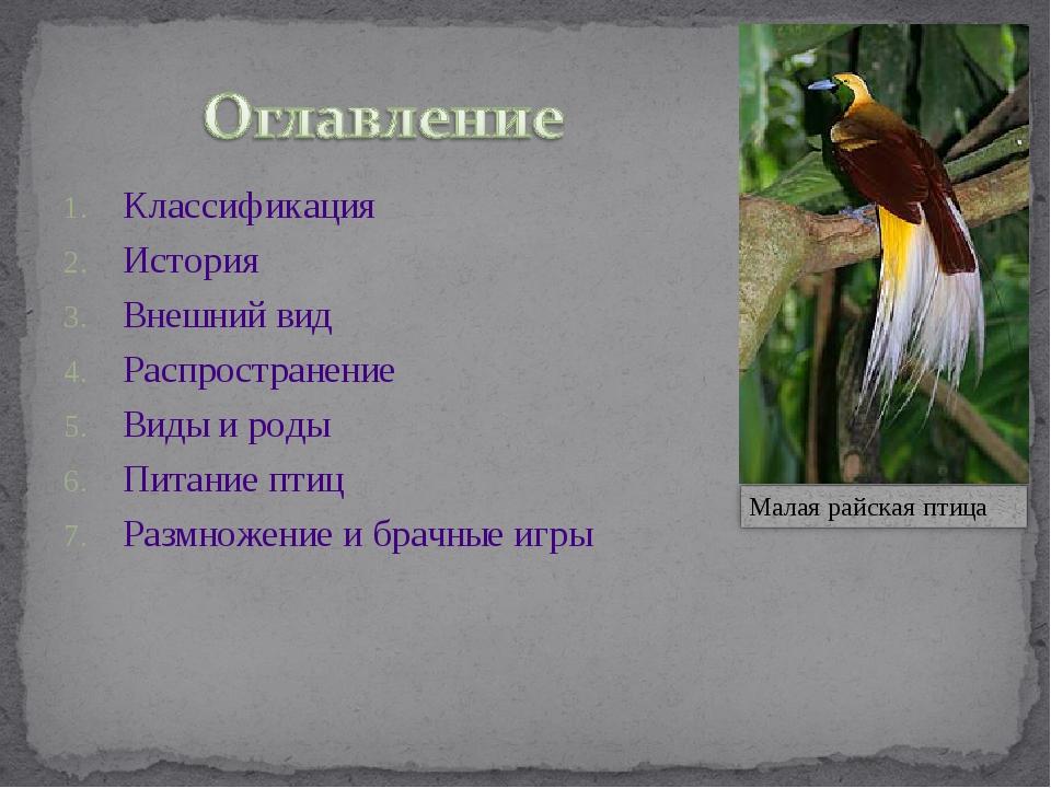 Классификация История Внешний вид Распространение Виды и роды Питание птиц Ра...