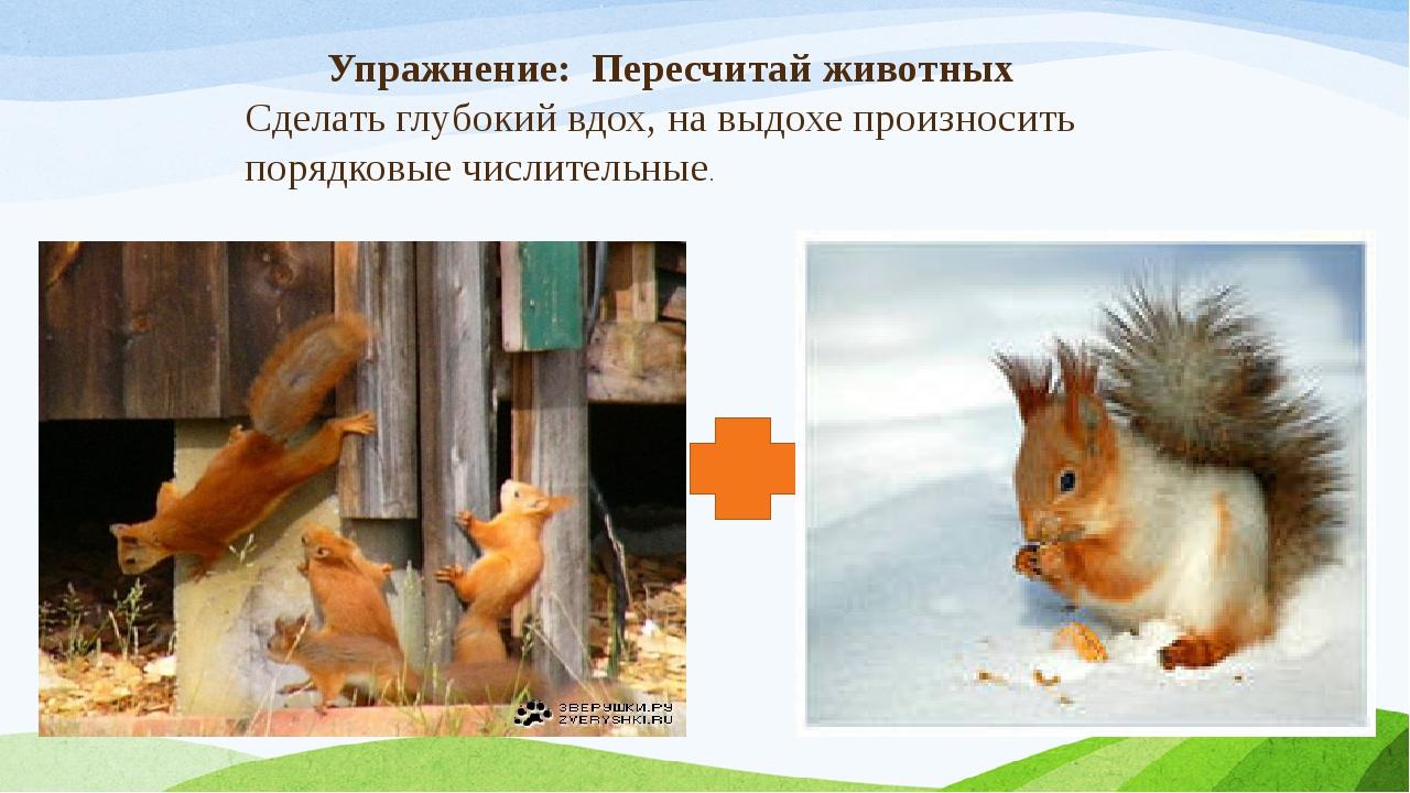 Упражнение: Пересчитай животных Сделать глубокий вдох, на выдохе произносить...