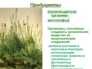 Продуценты (производители органики- автотрофы) Организмы, способные создавать