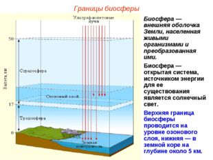 Границы биосферы Биосфера — внешняя оболочка Земли, населенная живыми организ