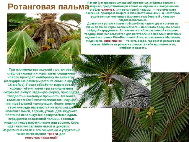 Ротанг(устаревшееиспанский тростник,«чёртов канат»)— материал, представля...