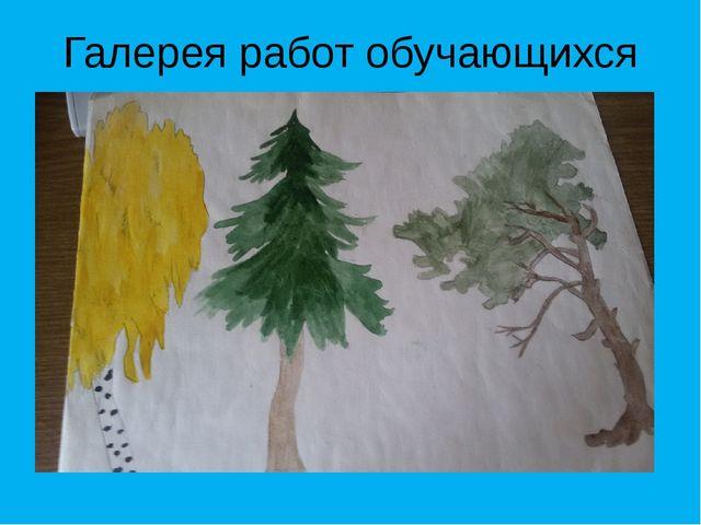 Галерея работ обучающихся