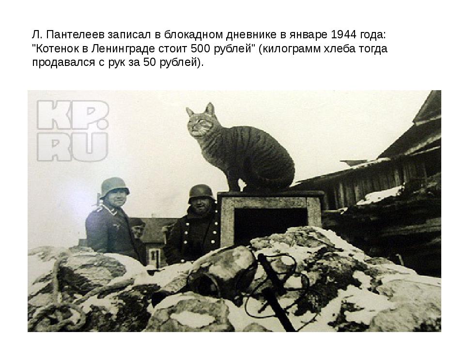 """Л. Пантелеев записал в блокадном дневнике в январе 1944 года: """"Котенок в Лени..."""