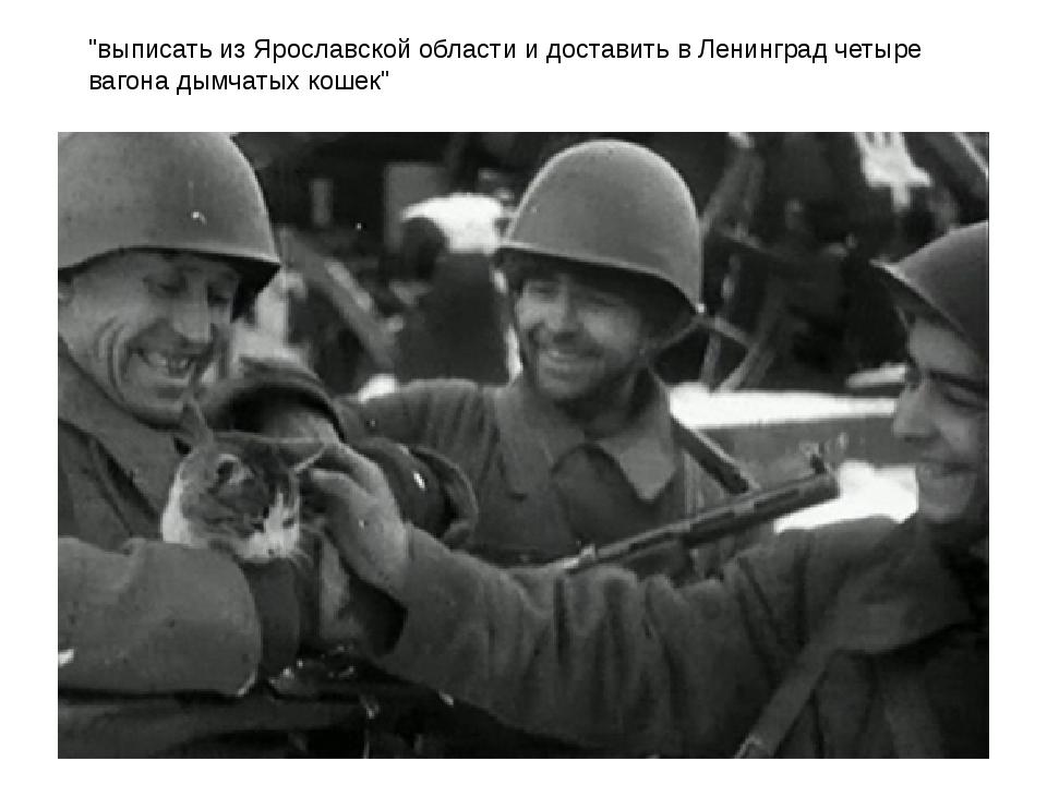 """""""выписать из Ярославской области и доставить в Ленинград четыре вагона дымчат..."""