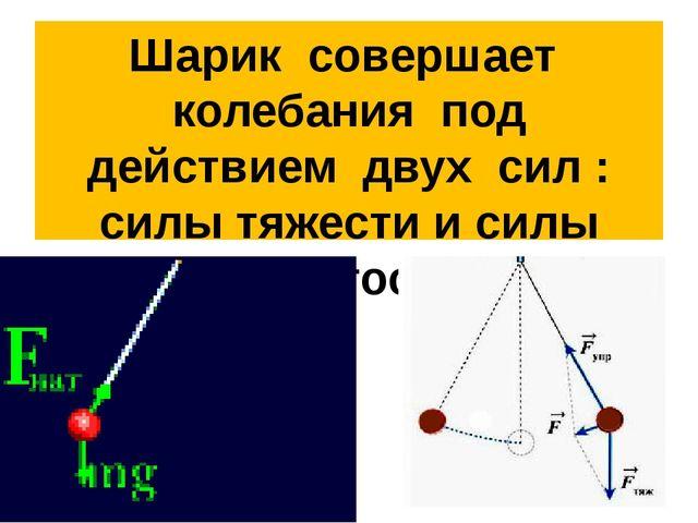 Шарик совершает колебания под действием двух сил : силы тяжести и силы упруго...