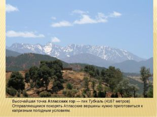 Высочайшая точкаАтласских гор—пикТубкаль(4167 метров) Отправляющимся пок