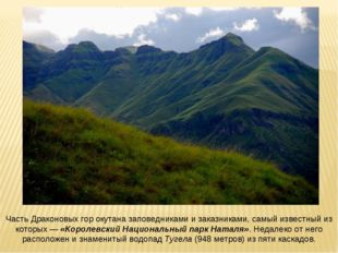 Часть Драконовых гор окутана заповедниками и заказниками, самый известный из