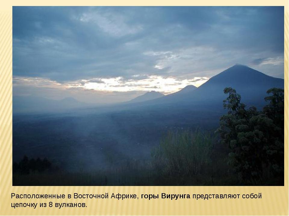 Расположенные в Восточной Африке,горы Вирунгапредставляют собой цепочку из...