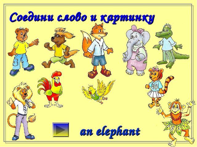 Соедини слово и картинку an elephant