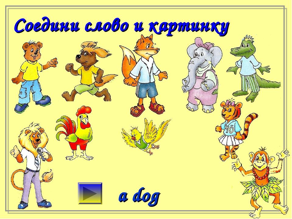 Соедини слово и картинку a dog