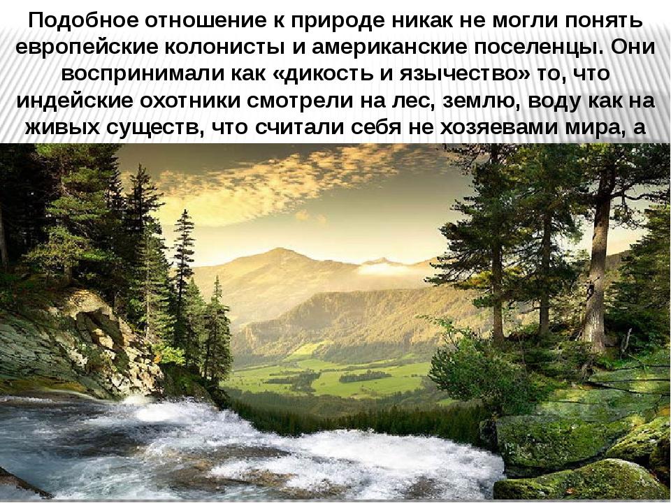 Подобное отношение к природе никак не могли понять европейские колонисты и ам...