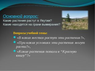 Основной вопрос: Какие растения растут в Якутии? Какие находятся на грани вым