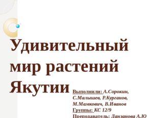 Удивительный мир растений Якутии Выполнили: А.Сорокин, С.Малышев, Р.Курганов,