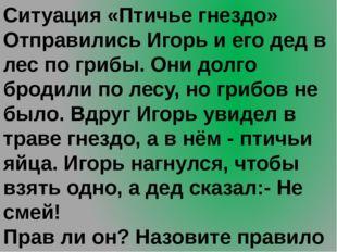 Ситуация «Птичье гнездо» Отправились Игорь и его дед в лес по грибы. Они долг