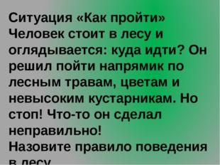 Ситуация «Как пройти» Человек стоит в лесу и оглядывается: куда идти? Он реши