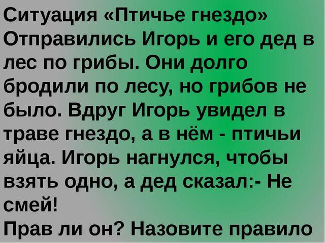 Ситуация «Птичье гнездо» Отправились Игорь и его дед в лес по грибы. Они долг...
