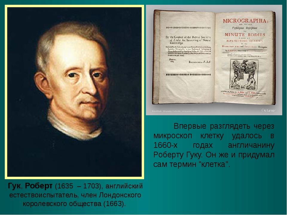 Гук, Роберт (1635 – 1703), английский естествоиспытатель, член Лондонского ко...