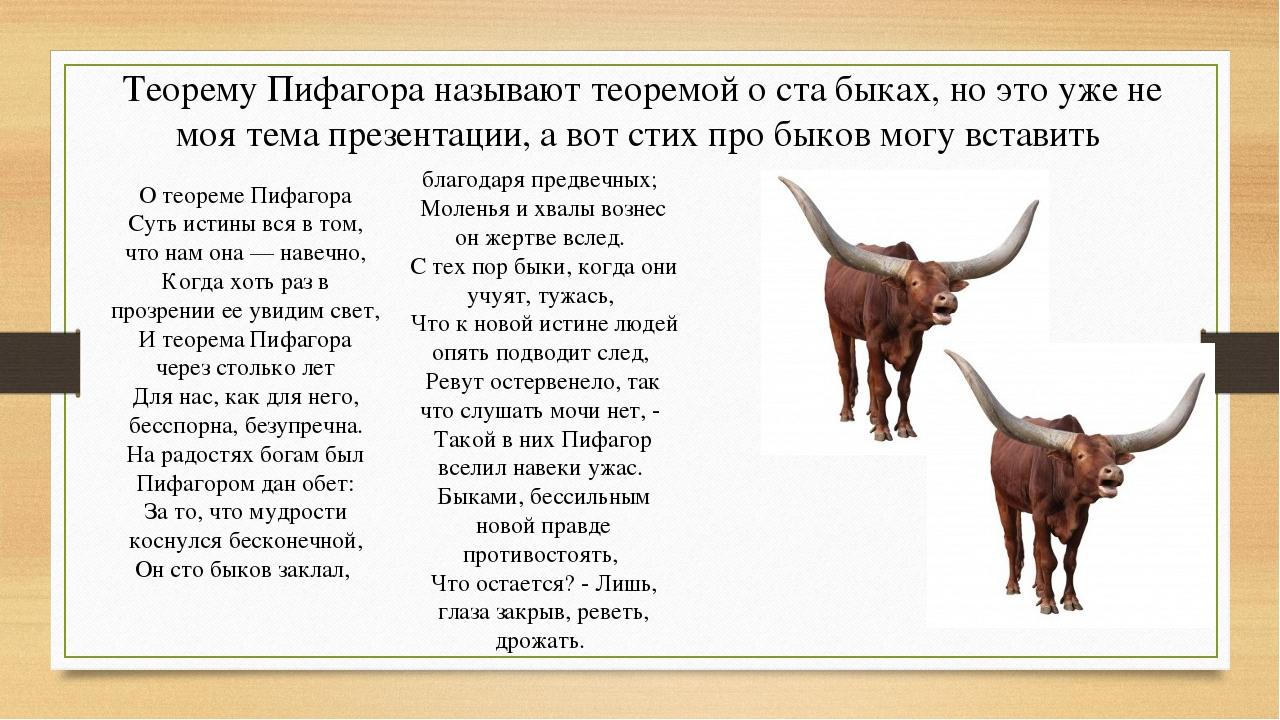 Теорему Пифагора называют теоремой о ста быках, но это уже не моя тема презен...